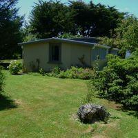 02-homestead-cattery-ashhurst-palmerston-north-18.jpg
