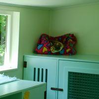 04-homestead-cattery-ashhurst-palmerston-north-1.jpg